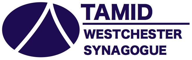 Tamid Westchester
